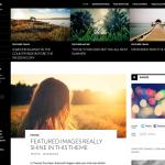 Mark Linssen Webdesign gratis thema